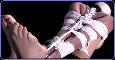 Strict bondage by Ted Michaels Damsels